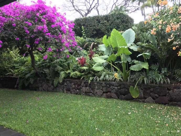 夏威夷热门房源